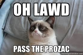 Grumpy Cat: Oh Lawd. Pass the Prozac.