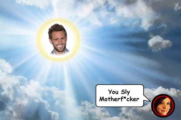 Nick Viall is the new bachelor